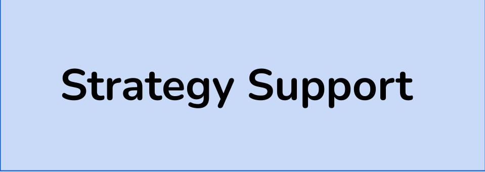 Strategy Support